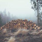 Bon Iver – re: stacks   Tutorial