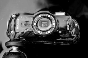 monochrome.jpg